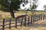 2504 Century Oak Drive - Photo 29