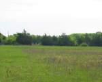 23 Acre County Rd 4640 - Photo 12