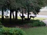 1501 Deer Path - Photo 36