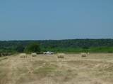 TBD County Road 203 - Photo 1