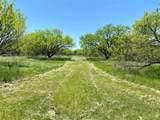 7312 County Road 164 - Photo 15