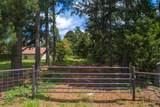 TBD Vz County Road 4915 - Photo 2