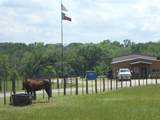 15551 County Road 496 - Photo 19