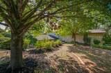 10510 Ravenswood Road - Photo 3