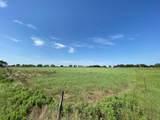 11404 Mitchell Bend Court - Photo 14
