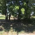 7388 Farm Road 114 - Photo 11