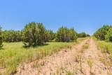 1030 Eagle Ridge Drive - Photo 6