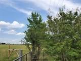 14024 State Highway 78 - Photo 6