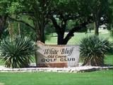 8118 High Mesa Drive - Photo 10