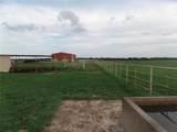 12203 Farm Road  3025 - Photo 32