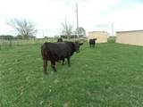 12203 Farm Road  3025 - Photo 33