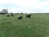 12203 Farm Road  3025 - Photo 35