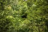 tbd White Dove Trail - Photo 5
