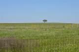 TBD Farm Road 219 - Photo 8