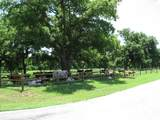 1319 Driftwood Ranch Trail - Photo 11