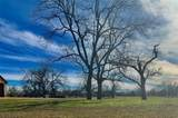 1319 Driftwood Ranch Trail - Photo 5