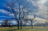 1319 Driftwood Ranch Trail - Photo 6