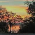 36037 Cedar Ridge Drive - Photo 8