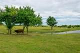 4305 County Road 599 - Photo 31