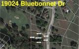 19024 Bluebonnet Drive - Photo 1
