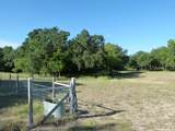 7251 County Road 334 - Photo 26