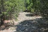 3272 Canyon Wren Loop - Photo 14