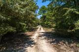 18159 County Road 446 - Photo 29