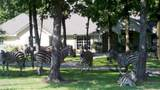 LT 223 Safari Shores Drive - Photo 8
