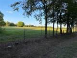 TBD Vz County Road 1714 - Photo 11