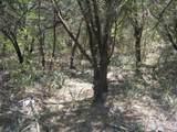 321 Heritage Trail - Photo 2