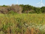 TBD County Rd 202 - Photo 27