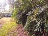 3409 Pin Oak Lane - Photo 13