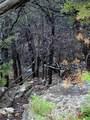 2005 Hells Gate Loop - Photo 9
