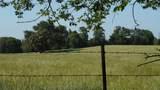 550 County Road 2431 - Photo 10