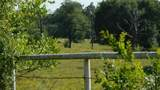 550 County Road 2431 - Photo 5
