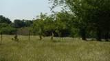 550 County Road 2431 - Photo 8