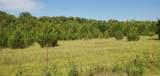 00 County Road 505 - Photo 6