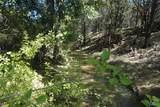 Lt 657R Canyon Wren - Photo 3