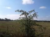 1009 County Road 235 - Photo 5