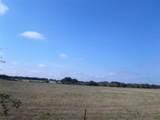 1009 County Road 235 - Photo 6