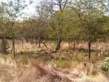 11 A Vista Oak - Photo 5