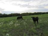 2861 County Road 4308 - Photo 6