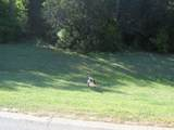 29112 Cedar Hill Drive - Photo 17