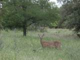 29112 Cedar Hill Drive - Photo 30
