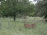 14045 Sandy Oaks Drive - Photo 31