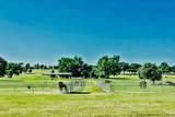 16358 Cattle Baron Drive - Photo 14