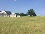 16358 Cattle Baron Drive - Photo 3