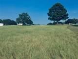 16358 Cattle Baron Drive - Photo 5