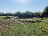 15 acre Farm Road 71 - Photo 4