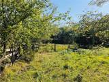 15 acre Farm Road 71 - Photo 9